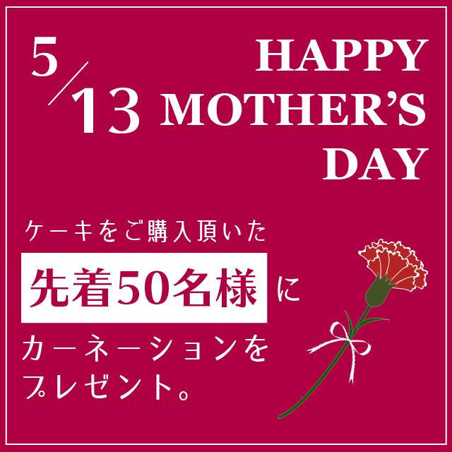 5/13限定★先着カーネーションプレゼント