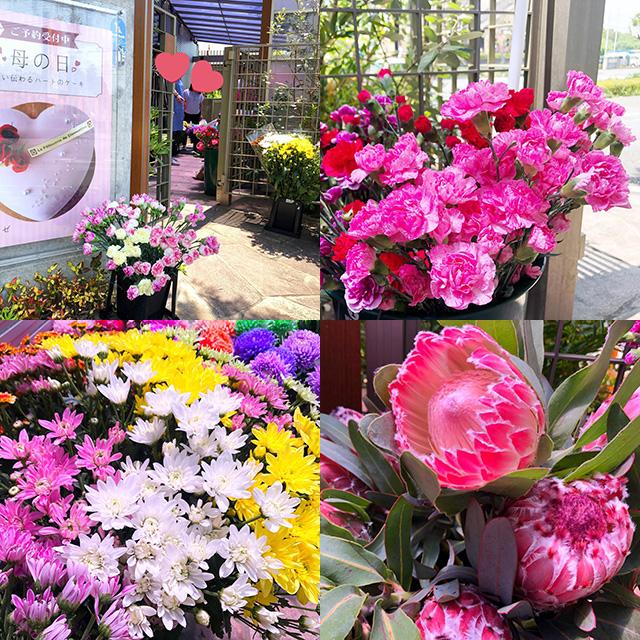 エターナルさんのお花の即売会開催中(2019.5.11-12)